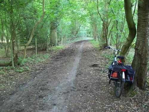 Muddy ditch