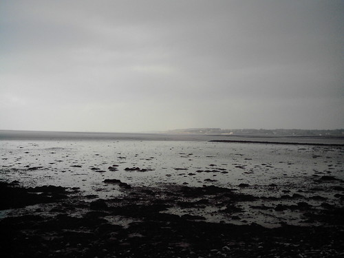 Tralee Bay from Cockleshell beach