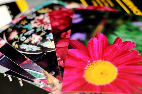 Thursday: Photos as tattoo colour inspiration