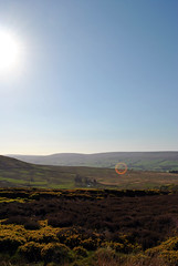 Up the hill on the Yorkshire Dales 3