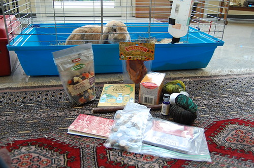 Bunny SWAP from Beck, USA