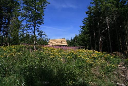 Un toit de chaume