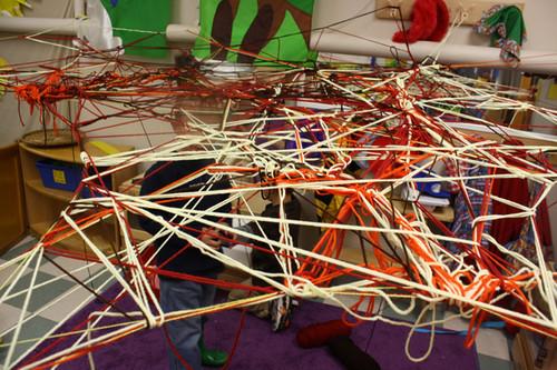 spider web  - 3