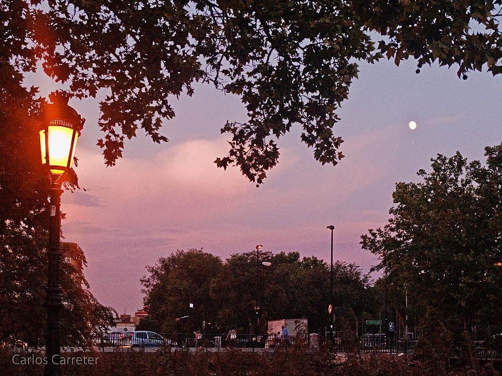 Luna sobre el canal