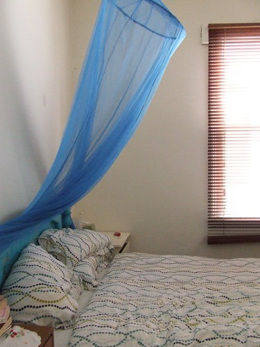 Bed canopy 3 by you.