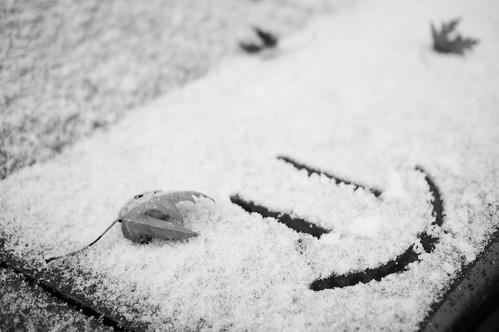 =) in Snow