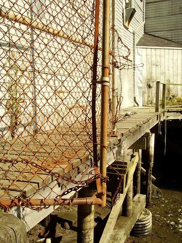 docks in Portland, ME