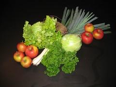 Aardvlo veggiebag week 43