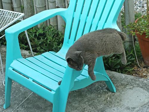 Smokey-Chair