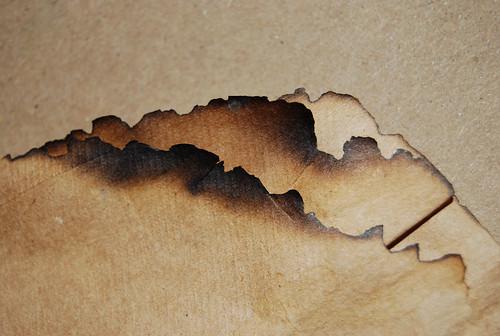 Burnt Paper Texture 01
