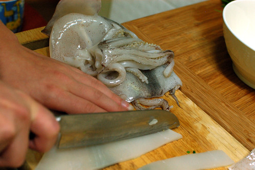 Cutting the Squid