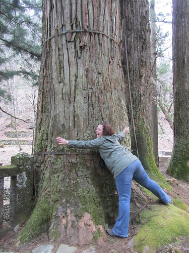 Tree hugging!