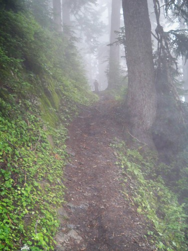 Adam Blum in the Mist of the PCT