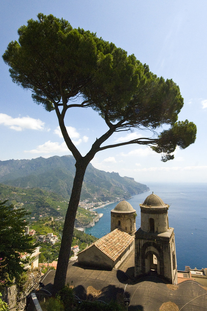 Ravello - Tree & Coast View