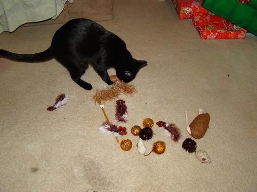 christmass 2009 (3)