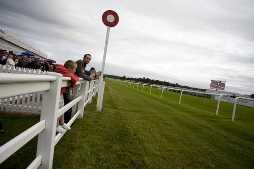 Lingfield Park Race Course