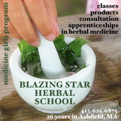 Blazing Star Herbal School in Ashfield, MA
