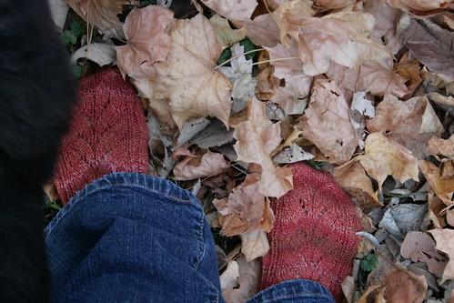 Mystery Sock 2009 : Fall socks