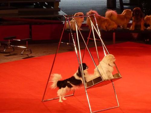WI, Baraboo - Circus World Museum 55