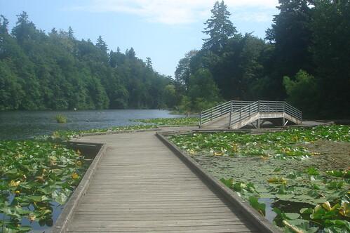 FENWICK LAKE 6