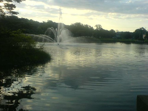 This is what sulivans pond normally looks like.