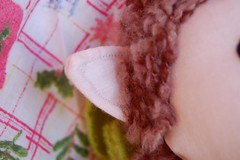 elf ear detail