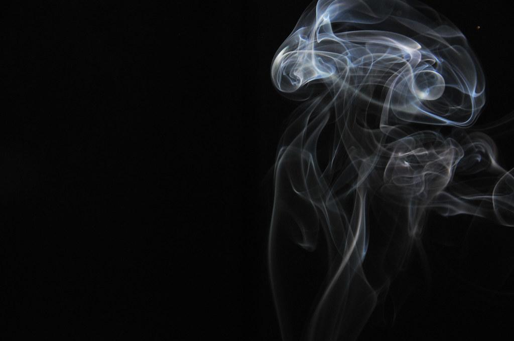 Smoke Jelly Fish