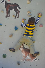 Ned on climbing wall