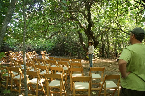 Inside the Fig Forest - set for a wedding