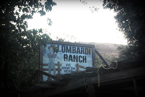 Lombardi Ranch by you.