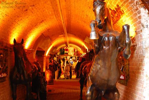 Horses - Camden Market again!