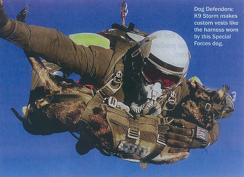 Special Forces Dog Jump - Click to Enlarge