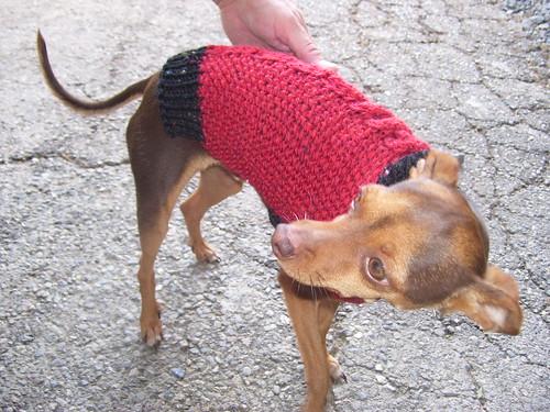 knitting 001