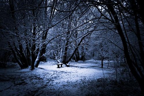The Bench of Winter Wonderland - Photo : Gilderic