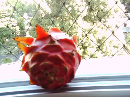strange_fruit