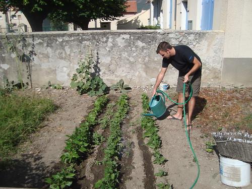 Tim Tending the Vegetable Garden