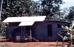 Wood and Tin House, 1958