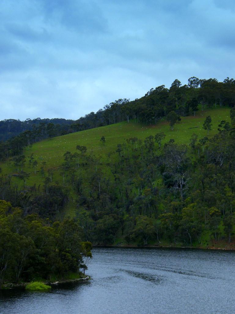 Kangaroo Creek reservoir nice and full
