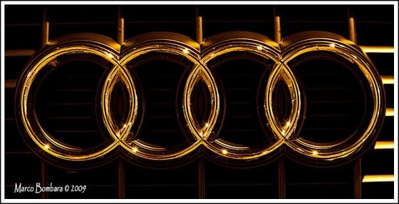"""Canon EOS 40D - Canon 50 1.8 - 5"""" - f 7.1 - ISO 250"""