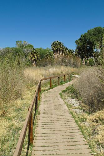 Boardwalk trail by you.