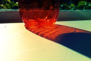 flesje
