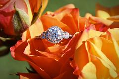 Melissa's Engagement Ring