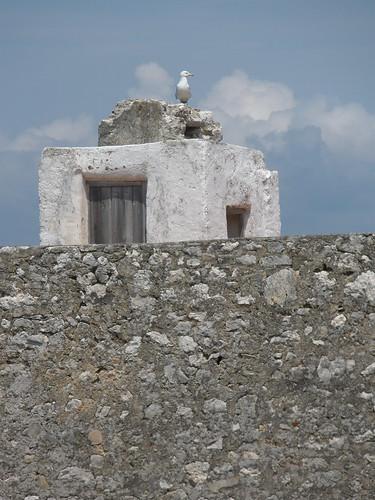 la torre #2