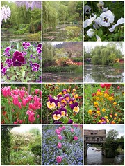 Giverny paradise, last spring ..