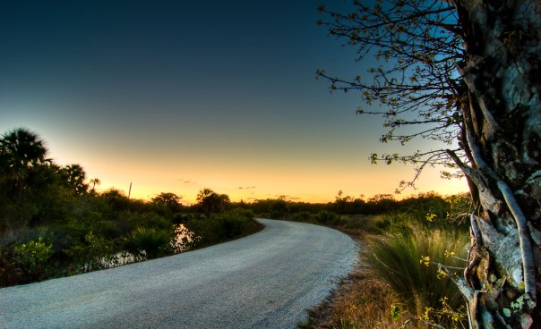 Blackpoint Wildlife Drive: Wide angle, winter dawn