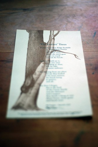 The Lovers' Trees