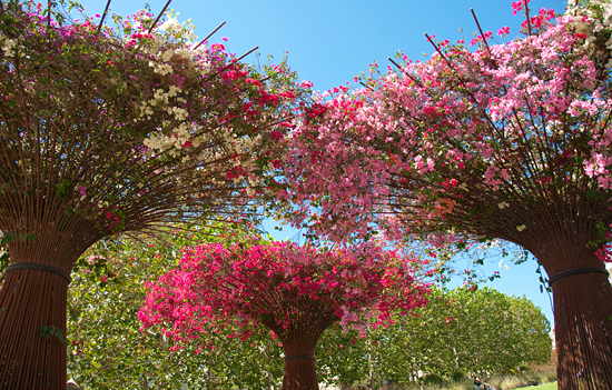 3985875087_d9fb0673c5_o J. Paul Getty Museum  -  Los Angeles California Los Angeles  Los Angeles cool LA Garden Art