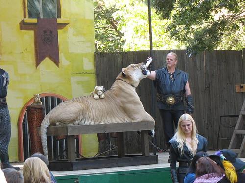 Did I mention the Liger is HUGE???