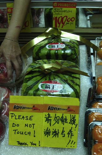 Japanese Square Watermelons
