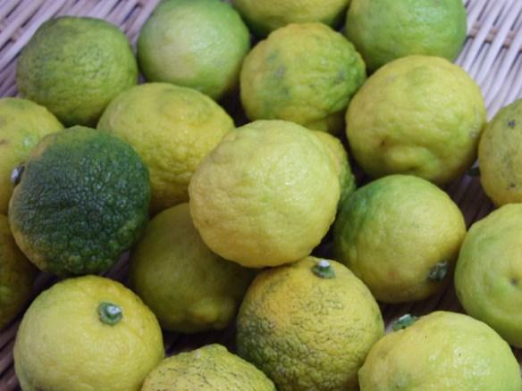 a citron